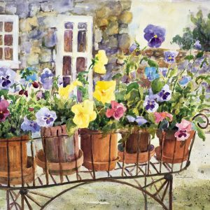 Ritas Pansies Paint By Numbers For Adults scaled 1
