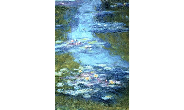 DIY Paint by Numbers for Adults - Inspiration - Claude Monet - Lillies - Impressionist Painter - Poster