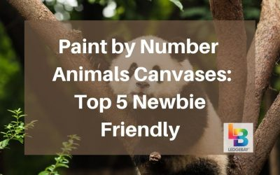 Paint by Number Animals Canvases: Top 5 Newbie Friendly